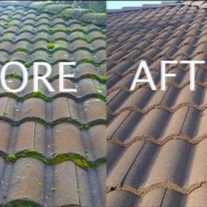 roof de-mossing abingdon